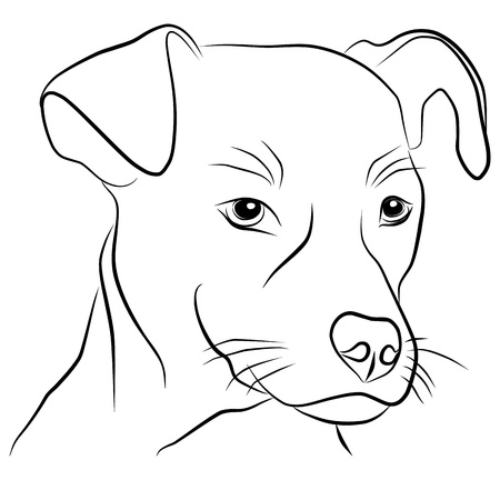 dog head isolated - freehand, vector illustration Vector