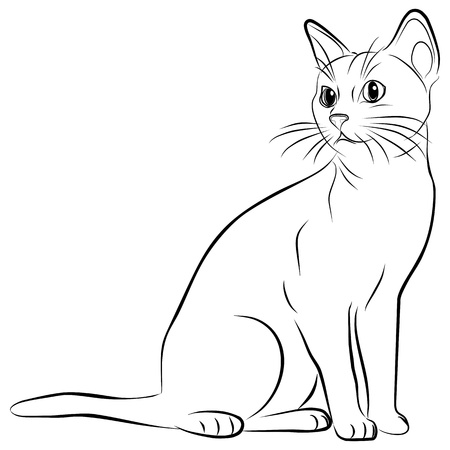 kitten cartoon: cat silhouette on a white background, vector illustration