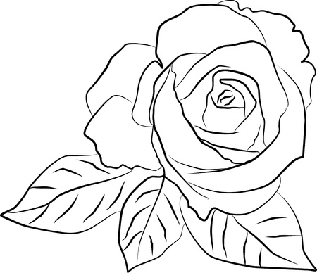 single line: rose silhouette on a white background, vector illustration