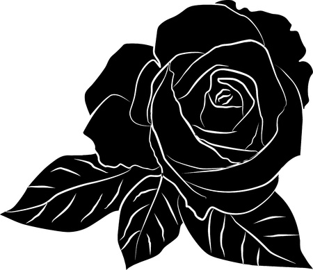 rose bud: black rose silhouette - freehand, vector illustration Illustration