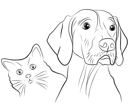 grappige honden: kat en hond - uit de losse hand op een witte achtergrond, vector illustratie