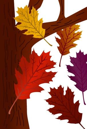 Fall Tree Stock Illustratie