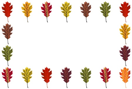 horizontal: Oak Leaf border -horizontal