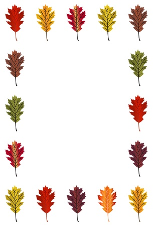 Oak Leaf border - vertical Vector