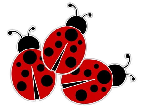 cartoon bug: Ladybugs
