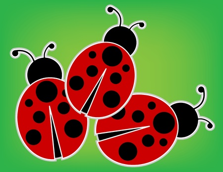 beneficial insect: Ladybugs
