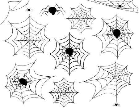 spider net: Spider Web Collection Illustration