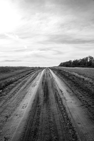 dirt: A cold dirt road. Stock Photo