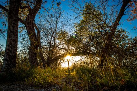 A beautiful landscape located in South Dakota. Stok Fotoğraf