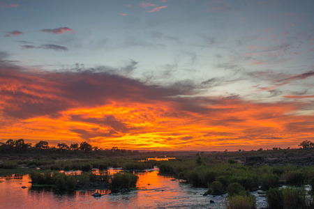 A beautiful sunrise on the Sabie River in Kruger National Park, South Africa.