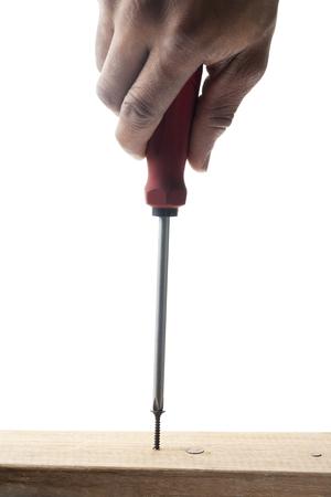 woodscrew: woodscrew and screwdriver