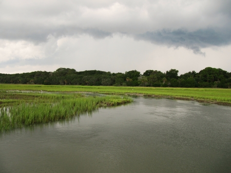bayou swamp: stormclouds  over the swamp