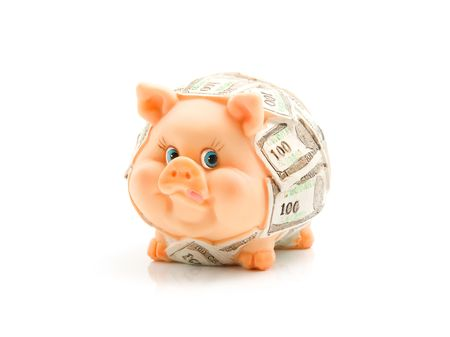 piggie bank: Funny piggie covered US dollars isolated on white background