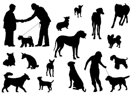 Vector dog collection on a white background Illustration