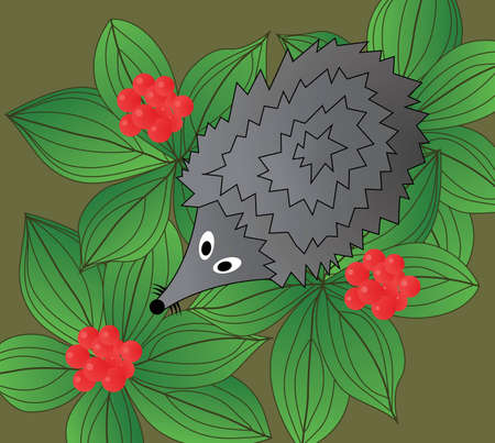 Hedgehog. The top view. Stock Photo - 945940
