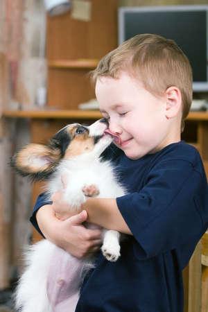 perros jugando: Un poco de perro lamiendo un muchacho de la nariz
