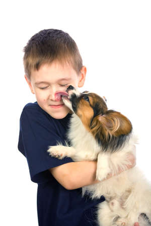 A little dog licking a young boys nose photo