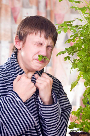 rheum: The teenager is treated for rheum by leaves of a geranium Stock Photo
