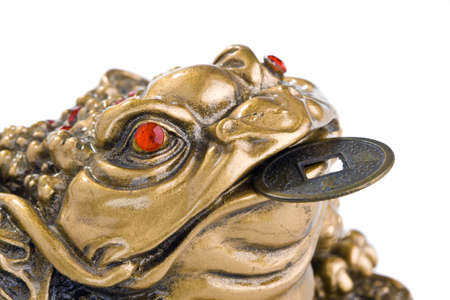 Chinese Feng Shui Frog with coins. Isolated on white photo