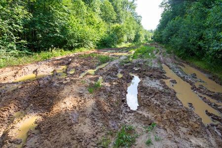 Muddy road   Imagens