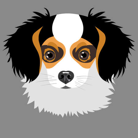 Puppy isolated on grey background. Vector illustration Illustration
