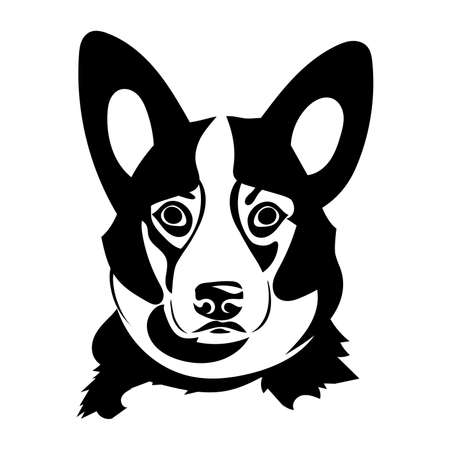 Portrait of a dog of the Welsh Corgi breed. Vector illustration