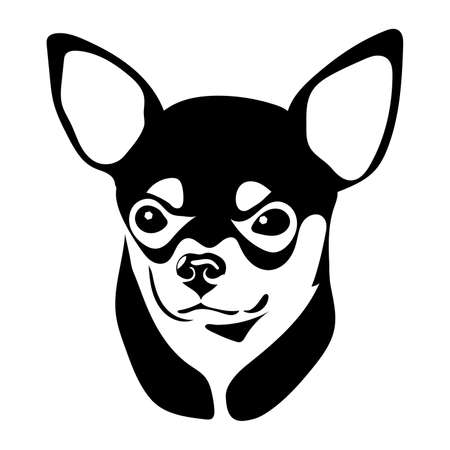 Portrait of a dog of the Chihuahua breed. Vector illustration Çizim