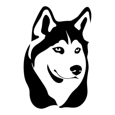 Portrait of a dog of the Siberian Husky breed. Vector illustration Illustration