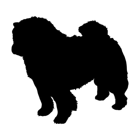 Chow Chow on a white background. Silhouette. Vector illustration Illustration