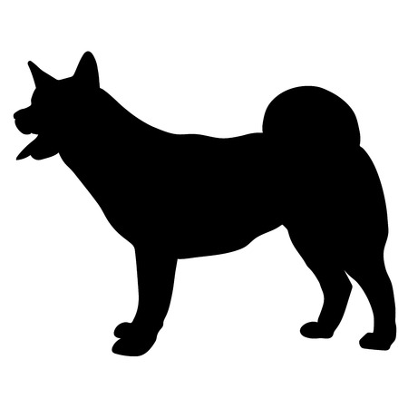 Silhouette of American Akita. Vector illustration on white background
