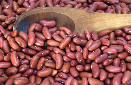 pinto bean: Red Kidney Beans