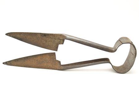 shears: pruning shears Stock Photo