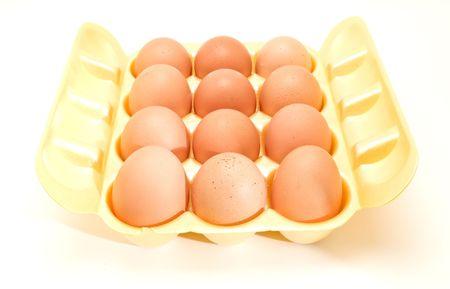 brown eggs photo