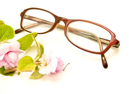 wildflowers and glasses Stock Photo - 5182590
