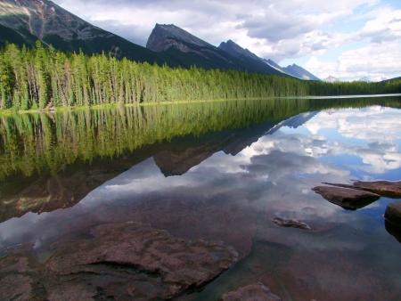 honey moon: Honey Moon Lake Reflection Stock Photo