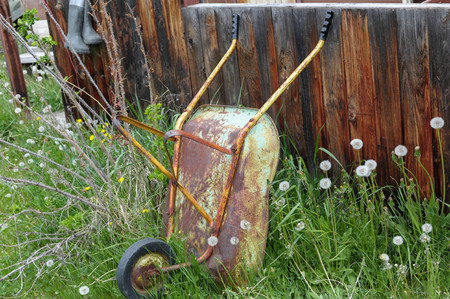 Wheel barrow leaning against the old homestead fence