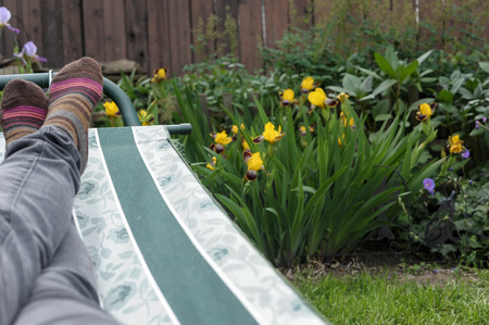 back yard: Lounging in the Back Yard