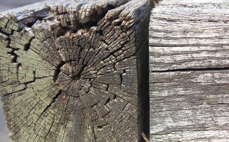 景色の材木 写真素材