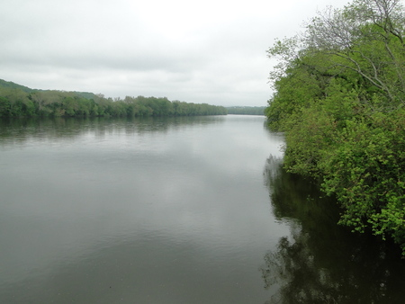 Wide river with overgrown bank Banque d'images