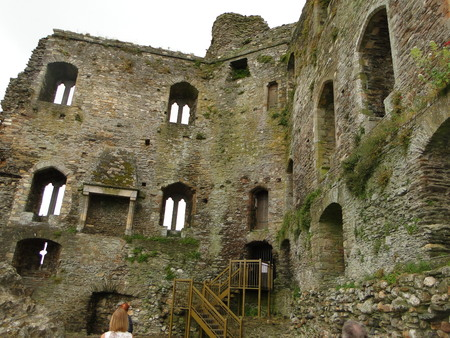 The castle ruins Ferns Castle is located in Ireland county of Wexford. The Norman castle was built in the 13th century