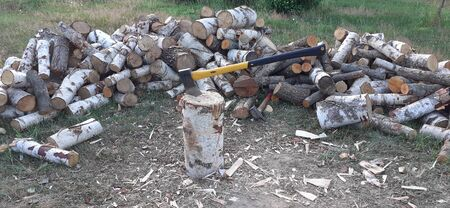 Firewood - getting ready for winter in Lithuanian country side