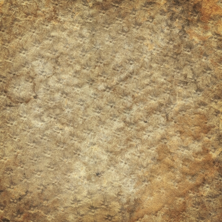 embossed paper: Old moldy embossed paper texture, vintage background Stock Photo
