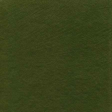 Green leather grunge background texture photo