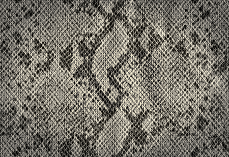 silver texture: Snake skin silver vintage background from artificial leather texture Stock Photo