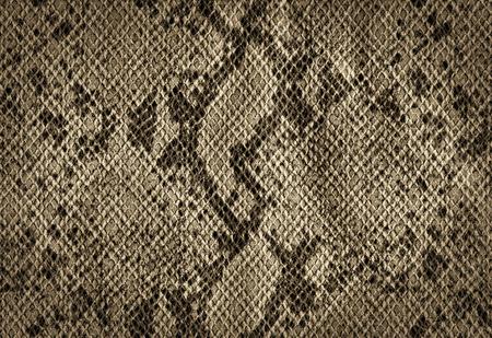 蛇皮人工皮革テクスチャから黄金のビンテージ背景