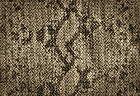 Snake skin golden vintage background from artificial leather texture