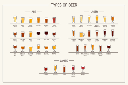 Types of beer. Various types of beer in recommended glasses. Vector Illustration