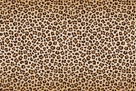 Leopard texture, brown beige with darker border. Vector illustration