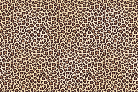 Leopard spotted fur texture background.