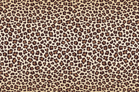 Animal leopard spots fur, horizontal texture. Vector illustration